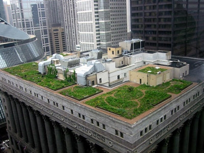 Green-rooftop-1-chicago-city-hall